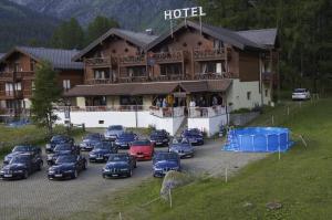 Hotel Alpenhof, Hotely  Oberwald - big - 28