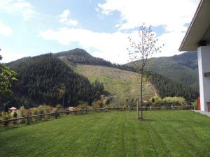 Casa Rural Kutxatxuri, Загородные дома  Аракальдо - big - 31