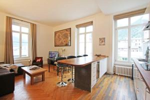 Alpine Museum - Apartment - Chamonix