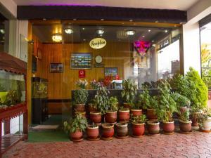 OYO 3217 Kurinji Residency, Hotel  Ooty - big - 27