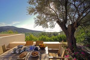 Epidaurus Olive Villa Argolida Greece