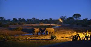 Elephant Valley Lodge, Chaty  Lesoma - big - 19