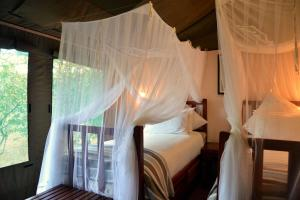 Elephant Valley Lodge, Chaty  Lesoma - big - 18