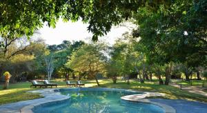 Elephant Valley Lodge, Chaty  Lesoma - big - 15