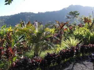 obrázek - The Bukit Artha