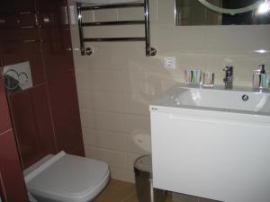 Apartment Larisa, Apartmanok  Szocsi - big - 37