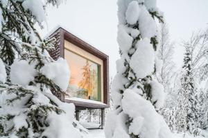 Arctic TreeHouse Hotel (6 of 25)