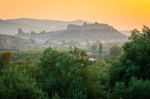 Natureland Efes Pension, Residence  Selçuk - big - 56
