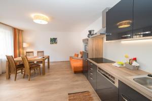 Schmitten 62 - Apartment - Zell am See