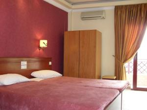 Double or Twin Room Hotel Olympion