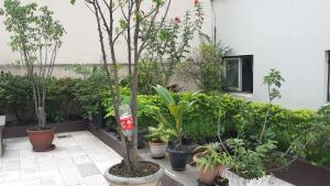 Balkony 92 - 4 Bedroom Apartment, Appartamenti  San Paolo - big - 6