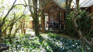 Elands River Lodge, Chaty  Machadodorp - big - 42
