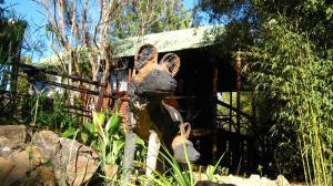 Elands River Lodge, Chaty  Machadodorp - big - 26