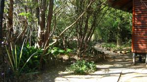 Elands River Lodge, Chaty  Machadodorp - big - 5