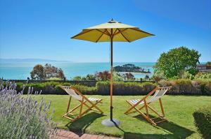 Cliff-top Holiday Home - Hotel - Nelson