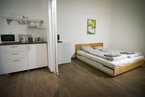 Metropolis Apartment - Dohány