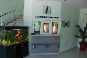 Отель Non stop, Владикавказ
