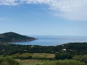 Location gîte, chambres d'hotes Les Hauts de Torraccia dans le département Corse du Sud 2a
