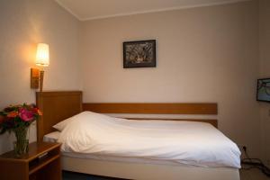 Landhotel De Hoofdige Boer, Szállodák  Almen - big - 193