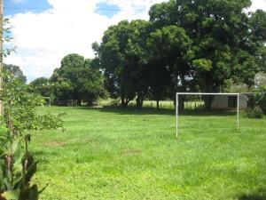 Fazenda Bela Vista Santa Fé Do Sul, Ferienhäuser  Santa Fé do Sul - big - 2