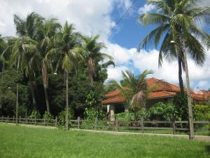 Fazenda Bela Vista Santa Fé Do Sul, Ferienhäuser  Santa Fé do Sul - big - 9