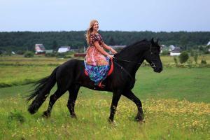 Inn First Horse - Molochkovo