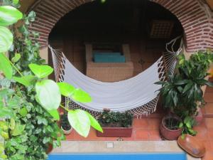 Casa India Catalina, Hotely  Cartagena de Indias - big - 53