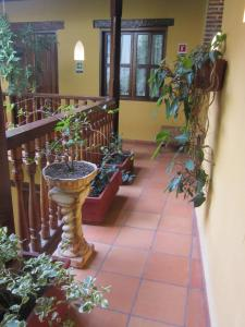 Casa India Catalina, Hotely  Cartagena de Indias - big - 68