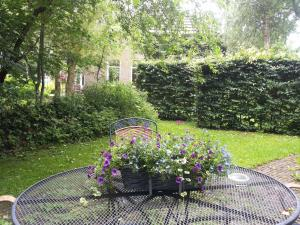 Bed & Breakfast Onder Dak, Bed and Breakfasts  Scharmer - big - 22