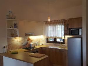 Istria Holiday Home Villa Adriatic, Vily  Kaštelir - big - 33