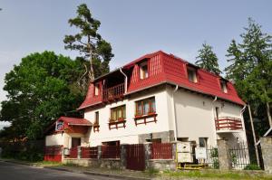 Vila Felix, Affittacamere  Sinaia - big - 69