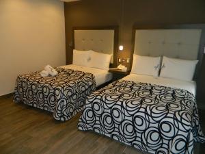 Hotel Flamingo Merida, Hotely  Mérida - big - 37