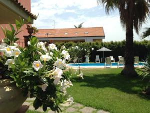 B&B Villa Papale - AbcAlberghi.com