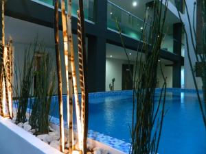Hotel Flamingo Merida, Hotely  Mérida - big - 34