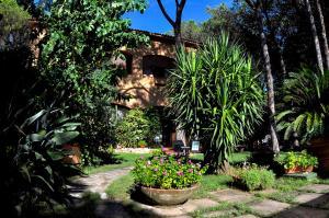 obrázek - Casa La Perla