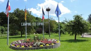 Location gîte, chambres d'hotes Camping Les Lupins dans le département Haut Rhin 68