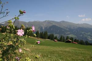 The Alpina Mountain Resort & Spa (14 of 60)