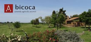 Bicoca - Casaletti - Tuscania