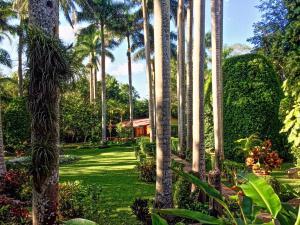 Hacienda Chichen (8 of 59)