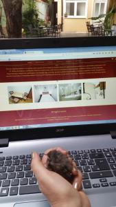 Apartments & Rooms Vienna, Guest houses  Osijek - big - 16