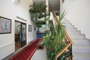 Hotel Ruia, Hotely  Poiana Brasov - big - 45