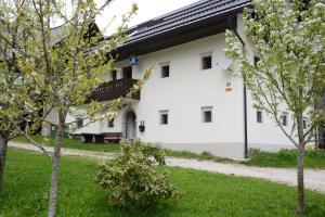 Apartment Zatrnik