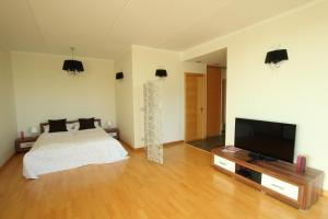 Riga Central Park New Apartment free parking - Milgravis