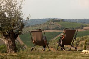 Casale Sterpeti, B&B (nocľahy s raňajkami)  Magliano in Toscana - big - 41