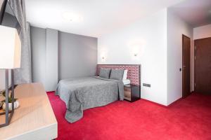 Viešbutis Simpatija, Hotel  Druskininkai - big - 24
