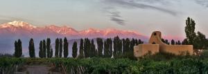 Cavas Wine Lodge (40 of 42)