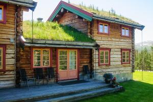 Øvre Nordli, Dovolenkové domy  Atnfoss - big - 8