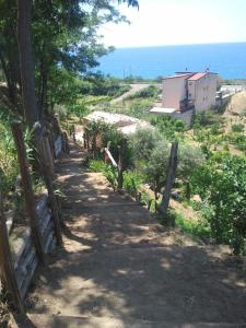 Al Melograno B&B, Bed & Breakfasts  Belmonte Calabro - big - 17