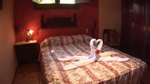 Allotjaments Rurals Can Pere Petit, Apartmanok  Santa Pau - big - 38