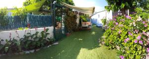 Location gîte, chambres d'hotes Clematisso dans le département Corse du Sud 2a